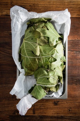 Fig leaves can be preserved for all year round use. Pictures: Theana Breugem